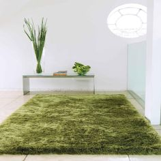 Whisper Shiney Shaggy Rugs in Apple buy online from the rug seller uk rugs in living room Interior Rugs, Interior Design Living Room, Room Interior, Apple Images, Tapis Design, Textile Design, Buy Rugs, Large Rugs, Rugs In Living Room