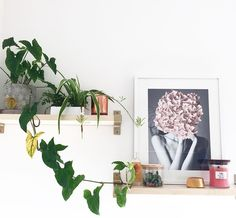 ✨W E E K - E N D D É CO ✨! Mettez des notes de couleurs dans votre déco avec les bougies parfumées WoodWick! 🍓(📷 @harperavathelabel ) ・・・ #shelfie #bougie #decoration #homesweethome #supportsmallbusiness #shopsmall #harperavathelabel #woodenbeads #homedecor #homeinspo #nursery #nurserydecor #children #nature #candles #shelfie #shelfiesaturday #plante #planteverte #jardinerie #cadre #cadeau #gift #decoration #homestyle #architecture
