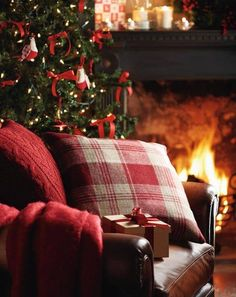 A warm fire and holiday hearth.