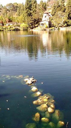 Self Realization Fellowship Lake Shrine Temple (Los Angeles, CA): Top Tips Before You Go - TripAdvisor