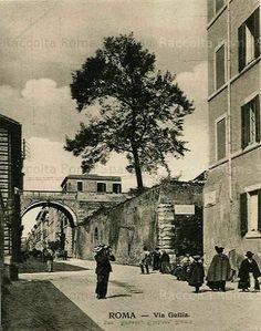 Via Giulia Anno: 1910