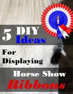 5 DIY Ideas for Displaying Horse Show Ribbons - Savvy Horsewoman Horse Ribbon Display, Show Ribbon Display, Horse Show Ribbons, Horse Show Mom, Dog Show, Show Horses, Horse Stables, Horse Barns, My Horse