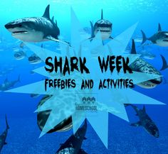 Enjoy these fun and educational freebies and activities related to sharks! It's our way of helping you celebrate the fun of Shark Week! Summer Preschool Themes, Preschool Science, Preschool Lessons, Lessons For Kids, Science Week, Elementary Science, Shark Activities, Cooperative Learning Activities, Fun Learning