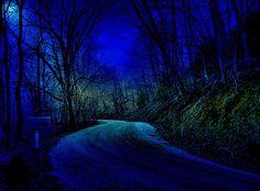:: Moonlight on a Hazy Night:: Photo by...