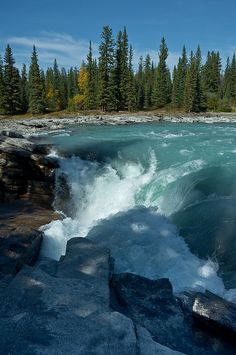 Athabasca Falls, Canada by Crest Pictures