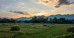 Best Things to Do in Pai Thailand Featured Image