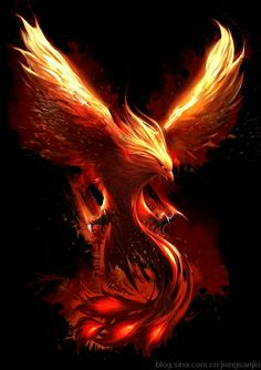 "Favorite phoenix for upper outer thigh tattoo - 6-8"" - orange, yellow, red, black water color"