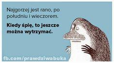 Prawdziwa Buka: stycznia 2015 Smile Everyday, Little My, Epiphany, Jokes, Lol, Thoughts, Funny, Wombat, Inspiration