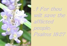 SAVE THE AFFLICTED