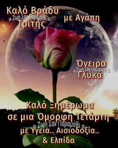 Good Night, Good Morning, Funny Images, Pink Roses, Facebook, Reading, Books, Beautiful, Nighty Night