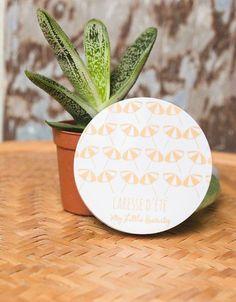 Poudre bronzante caresse d'été - My Little Beauty My Little Beauty, My Little Corner, Little Boxes, Cactus Plants, Planter Pots, Products, Makeup, Lunch Count, Gifts