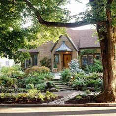 Layering sizes and shapes of greenery creates an eye-catching landscape. More front yard landscape secrets: http://www.bhg.com/gardening/landscaping-projects/landscape-basics/front-yard-landscape-secrets/?socsrc=bhgpin070613smallspace=11