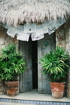 love doors and palapa roof