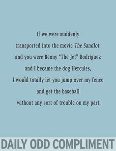 You Think I'm Funny: The sandlot