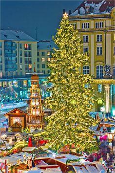 Christmas Tree in Dresden, Striezelmarkt, Germany