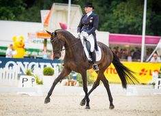rider Marilyn Little has ridden into the Day 1 dressage lead at the Luhmühlen CCI**** with RF Scandalous! Photo by Shannon Brinkman Photography Dressage Horses, Horse Pictures, Taking Pictures, Big, Photography, Animals, Horse Photos, Photograph, Animales
