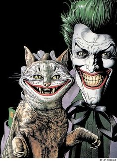the joker's cat, brian bolland