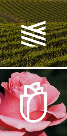 simple graphics replicating nature