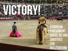 HUGE VICTORY! European Parliament Votes to End Subsidies for Bullfighting