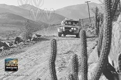 1970 World Cup Rally - The toughest rally in retrospect