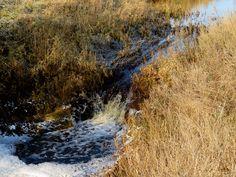 Jälgige meie loodusblogi. Klikkige pildile ja valige endale sobiv sotsiaalmeediakanal. Natural World, Mountains, Water, Travel, Outdoor, Search, Collection, Gripe Water, Outdoors