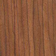 Ebiara | The Wood Database Bungalow Renovation, Woodworking Desk, Wood Texture, Architectural Elements, Wood Veneer, Building Materials, Industrial Furniture, Wood Species, Dupes