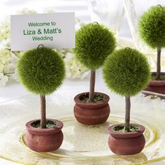 Topiary Place Card H