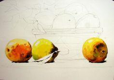 [정물수채화] 모과정물 - 수채화과정 : 네이버 블로그 Art, Painting
