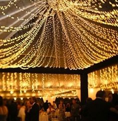 @Tiffany Holmes Clear tent with light canopy.. imagine draping with vines and adding tall centerpieces with branches.. #wedding #reception #stringlights #canopy #tent