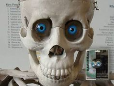 Realistic Eyeballs: Tutorial - Blogs - Halloween Forum