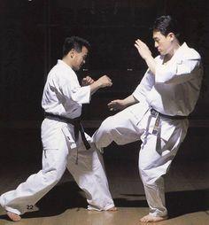 Martial Arts Manga, Chinese Martial Arts, Kyokushin Karate, Shotokan Karate, Michael Jai White Workout, Fighting Poses, Pose Reference, Drawing Reference, Dojo