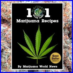 Weed surely isn't what it used to be. The days of dirt from Mexico are far behind us thankfully. The care that goes in to growing these days is ridiculous and the products are unrivaled. Growers produce some of the most potent cannabis these days, for both medical and recreational use. The following are ten…