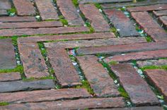 Brick Outline For Mulch Outdoors Pinterest Brick