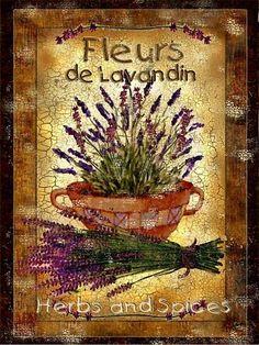 169 Meilleures Images Du Tableau Lavande Provence