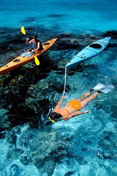 Snorkeling/kayaking. Belize.