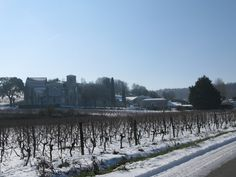 Snow in February 2012 in Bouteville, Grande-Champagne