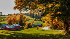 The Jenne Farm in Reading is one of my favorite classic fall foliage scenes in Vermont. Make sure you visit the large maple tree on the farm and put in a donation to help the owners keep the farm running. You can purchase Vermont-made maple syrup and other products on their front porch.