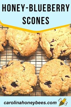 Make delicious scones at home using this honey blueberry scone recipe that features honey! #carolinahoneybees #honeyscones #bakingwithhoney