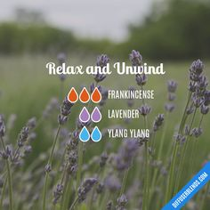 Relax and Unwind - Essential Oil Diffuser Blend