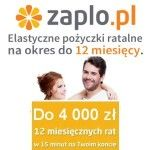 Pożyczka Zaplo jest przeznaczona dla osób w wieku od 21 do 75 lat, potrzebujących szybkiego zastrzyku gotówki. Można pożyczyć 4 000 złotych na okres od 3 do 12 miesięcy, przy czym firma zapewnia możliwość przesunięcia terminu spłaty raty, dzięki czemu są to elastyczne pożyczki