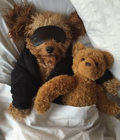This Goldendoodle shows us just how hard a dog can chill. Cute Baby Dogs, Cute Little Puppies, Cute Little Animals, Cute Funny Animals, Funny Dogs, Cute Puppies, Teddy Bear Poodle, Le Terrier, Mini Goldendoodle Puppies