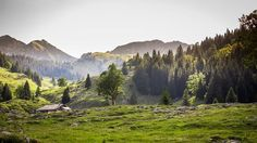 Photo de Schwarzsee. Swiss Alps, Switzerland, Germany, Europe, Italy, Mountains, Landscape, Awesome, Travel Plan