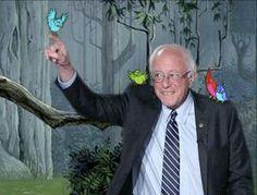 Humorous memes inspired by Democrat Bernie Sanders's 2016 presidential campaign.: Disney Princess