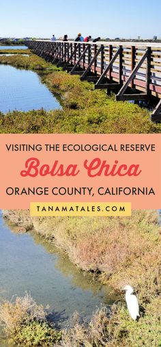 Complete guide to visit the Bolsa Chica Ecological Reserve | California | Things to do in Huntington Beach | Things to do in Orange County | Things to do in Seal Beach | Things to do near Anaheim | Bolsa Chica State Beach | Orange County Beaches | Orange County Hikes | Southern California Hikes | Orange County Aesthetic | Orange County Photo Locations | Orange County Bucket List | Pacific Coast Highway Road Trip | Southern California Road Trip | Huntington Beach Hikes | Souther California…