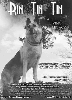 Image detail for -The first show that I kind of remember is Rin Tin Tin, I bet you ...