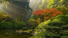 portland japanese garden   Portland Japanese Gardens   Beautiful Gardens