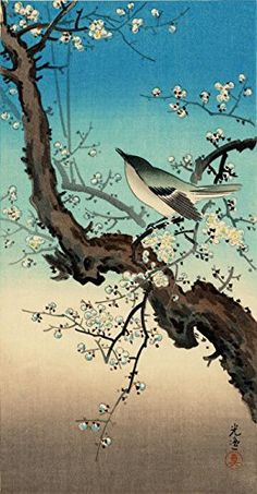"Japanese Art Print ""Plum Warbler"" by Tsuchiya Koitsu. Size (9""x17"") Shin Hanga and Art Reproductions http://www.amazon.com/dp/B00XWXBQPA/ref=cm_sw_r_pi_dp_.kWvwb0ZFCY58"