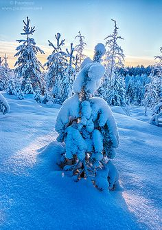 January in Finland by Puuronen, via Flickr