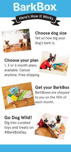 Have a fun themed box full of the best toys & all-natural treats delivered every month! BarkBox pup testers and pup-ruvin' hoomans spend months selecting the best products, but if your pup doesn't ruv an item in their box, we'll send you a replacement better suited for them (Scout's Honor!). All treats are full-size, all-natural, made in USA/Canada, and wheat/corn/soy free.