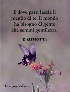 Italian Quotes, Good Morning, Philosophy, Bff, Butterfly, Relax, Facebook, Wisdom, Messages